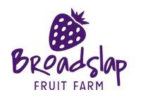 broadslap_purple_logo_200pix